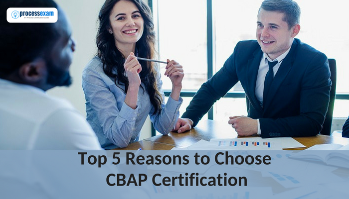 CBAP certification, Networking Platform, Business Analysts, Certified Business Analysis Professional certification, IT industry, IIBA, Business Systems Analyst, Systems Architect or Designer