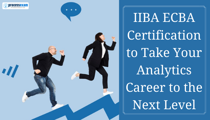 Business Analysis, IIBA, Business analyst, IIBA ECBA Exam, ECBA, ECBA Exam, ECBA Certification, Entry Certificate in Business Analysis, IIBA Entry Certificate in Business Analysis, ECBA Certificate, IIBA ECBA, IIBA ECBA Certification, BABoK, IIBA Entry Level Certificate in Business Analysis ECBA