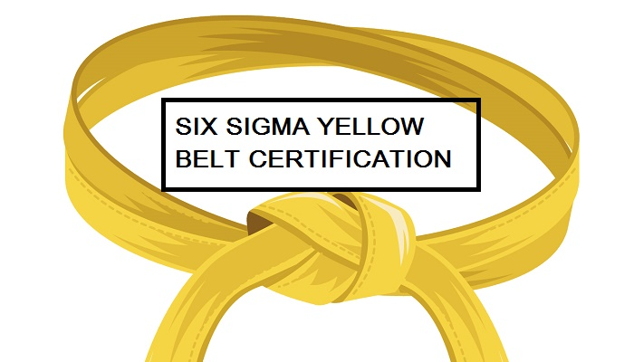 jobs for six sigma yellow belt certified professionals