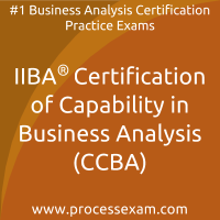 IIBA Certification of Capability in Business Analysis (CCBA) Practice Exam