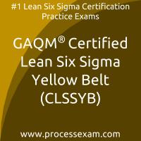 Certified Lean Six Sigma Yellow Belt (CLSSYB)