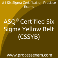 Certified Six Sigma Yellow Belt (CSSYB)
