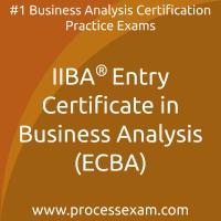 IIBA Entry Certificate in Business Analysis (ECBA) Practice Exam