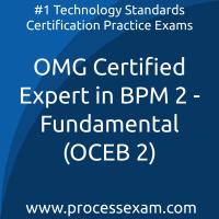 OMG Certified Expert in BPM 2 (OCEB 2) - Fundamental Level (OMG-OCEB2-FUND100) P