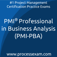 PMI Professional in Business Analysis (PMI-PBA) Practice Exam